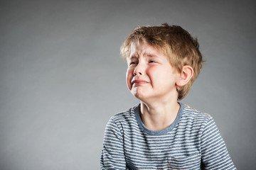 Экспертиза детско-родительских отношений в семейных спорах